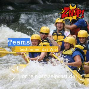 Das Team bestimmt das Wie