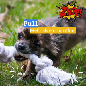 Pull - Mehr als nur ein Türöffner